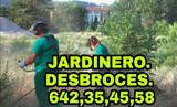 JARDINERO económico DESBROCES . - foto