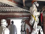 Especialistas en uralita con amianto sev - foto