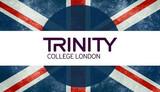 TRINITY ISE III C1 WRITING - foto
