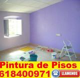 PINTORES PROFESIONALES TECHOS Y PAREDES - foto
