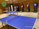 Alquiler de mesas de Ping pong y juegos - foto