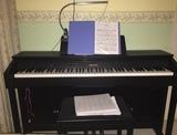 PIANO CASIO CELVIANO AP-460
