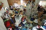 Servicios de limpieza por diógenes - foto
