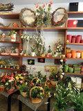 Traspaso floristería - foto