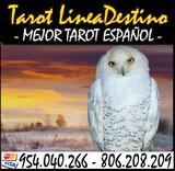 tarot lider en consultas  - foto
