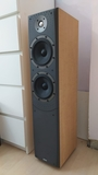 BOWERS&WILKINS DM-309 IMPECABLES