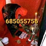maestro Yaya gran vidente 685055756 - foto