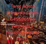pregunta gratis tarot - foto