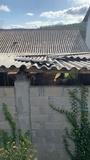 tejados - foto