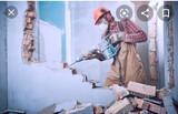 Demoliciones y limpieza - foto