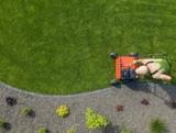 limpieza de fincas y jardines - foto
