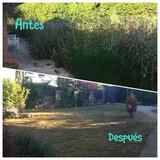 Desbroces solar huerto chalets - foto