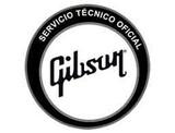 GIBSON VALENCIA SERVICIO TECNICO OFICIAL - foto
