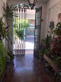 112012604 LOS PINOS - foto