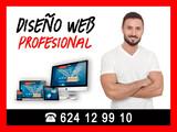 Diseño Web Profesional - foto
