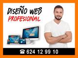 Diseño Web + Posicionamiento SEO - foto