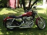 HARLEY DAVIDSON - SPORTSTER® XL 883 CUSTOM - foto