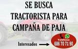 BUSCO TRACTORISTA - foto