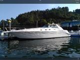 SEA RAY 45 SUNDACER - foto