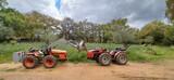 AGRIA EL LEON  - EL LEÓN - foto