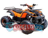 QUAD ATV 125CC - HUMMER PANDA - foto
