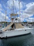 BARCO SPORT FISHING - foto