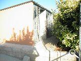 RESIDENCIA CANINA Y FELINA - foto