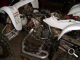 MG RACING-GENERATION QUAD-SUZUKI - 400 LTZ - foto