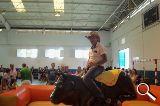 Alquilar toro mecanico - foto