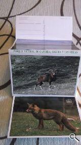 postales cazorla - foto