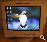 monitor Fujitsu  de 17 - foto