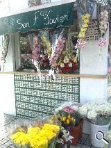 Flores en Utrera y provincia - foto