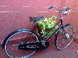 Bicicleta antigua varilla Raleigh - foto
