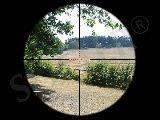 visor de field target o fclass desde 180 - foto