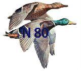 Pegatinas-adhesivos  caza de  patos - foto